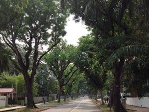 Tanglin Neighbourhood